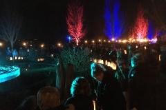 Wereldlichtjesdag-Kampen-2016-20